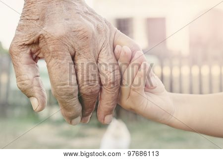 Young Hand Holding Grandparent