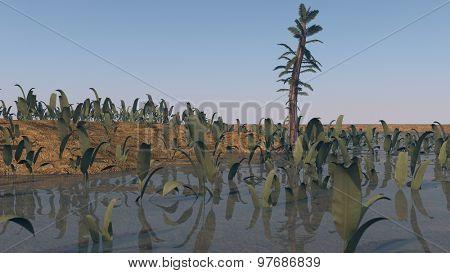 prehistoric landscape with tempskya trees