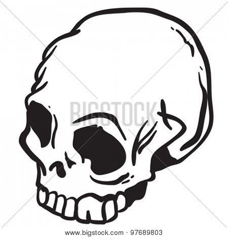 skull cartoon illustration