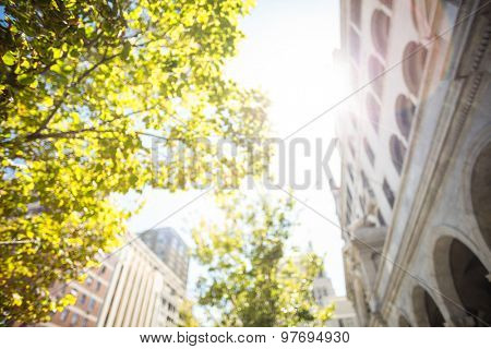 Low angle view of buildings and tress in the city