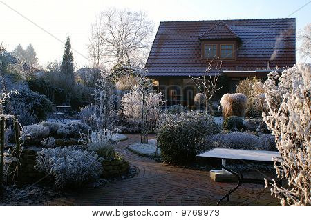 winter in a natural garden