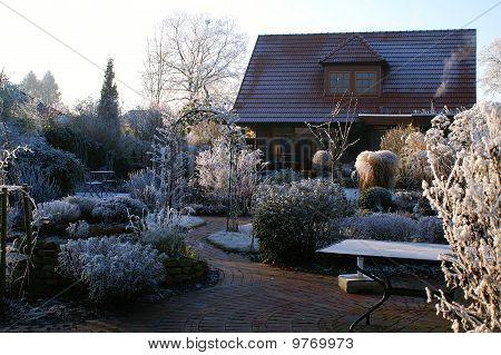 winter in a natural garden