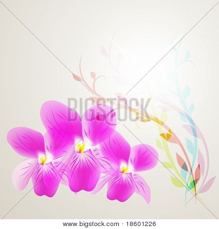 Abstract background with Viola flowers