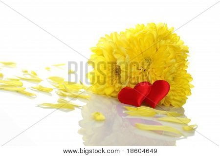 Yellow chrysanthemums with two red hearts