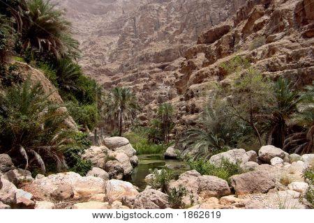 Into The Wadi