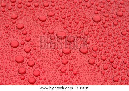 Water Beads On Car Hood