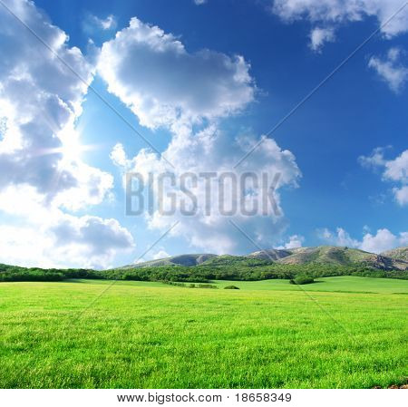Green meadow in mountain. Composition of nature.