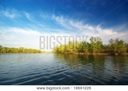 River and spring forest. Nature composition.