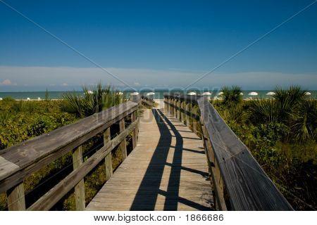 Long Shot Of Bridge And Beach
