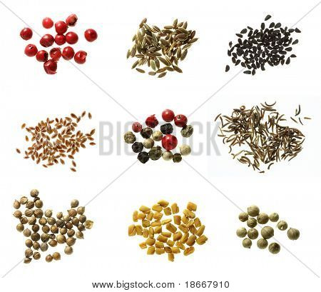 nine different kinds of spices super macro shots - red peppercorns, dill seeds, onion seeds, psylluim seeds, mixed peppercorns, black cumin seeds, white coriander, fenugreek, green peppercorns