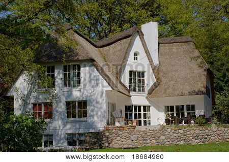 Reed covered house