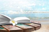 Reading during summer vacation. Book and flower on landscape background poster