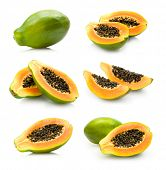 foto of pawpaw  - papaya collection - JPG