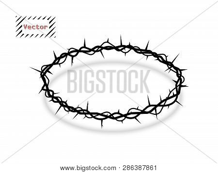 Vector Crown Of Thorns Oval