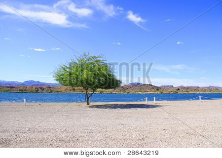lake Havasu at California and Arizona border