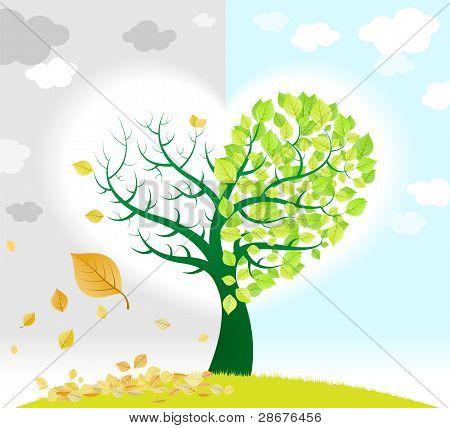 Frühling und Herbst Baum