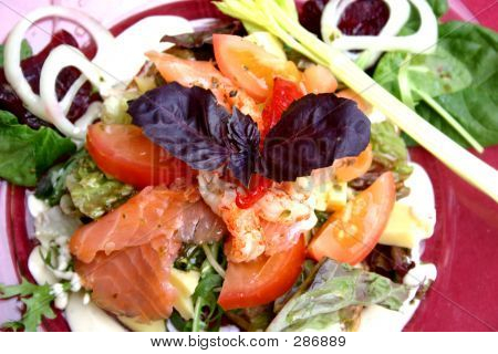 Plate Of Seafood Salad