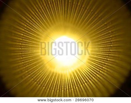Golden light in tunnel
