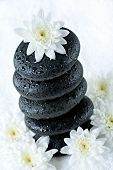 foto of flower arrangement  - Photo of white flower lying on the top of pile of stones - JPG