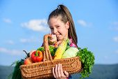 Girl Kid Rustic Style With Fall Harvest. Child Cheerful Celebrate Harvest Holiday Vegetables Basket. poster