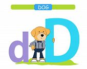 Letter D And Funny Cartoon Dog.  Animals Alphabet A-z. Cute Zoo Alphabet In Vector For Kids Learning poster