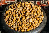 Argan Seeds And Argan Nuts. Making Of Argan Oil From Argan Nuts And Seeds In Morocco poster