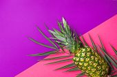 Ripe Pineapple On Green Palm Leaf On Duotone Fuchsia Pink Vibrant Violet Background. Trendy Funky St poster