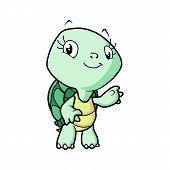 Cute Cartoon Turtle Vector Illustration.cartoon Animal Turtle Isolated On Background.sea Turtle, Bab poster