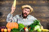 Man With Beard Wooden Background. Become Organic Farmer. Farmer With Organic Homegrown Vegetables. G poster