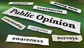Public Opinion Surveys Polls Headlines 3d Illustration poster