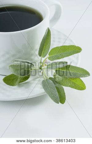 Herbal tea with fresh sage leaves