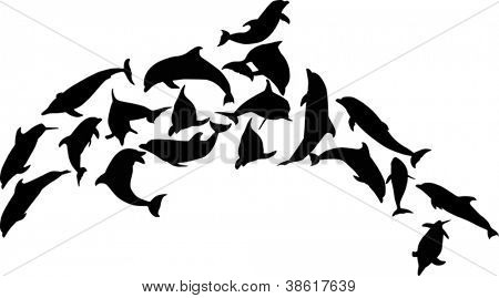 illustration with complex dolphin isolated on white background