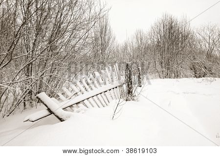 old fence on white snow