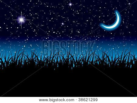 Long grass with space scape and bright cresent moon