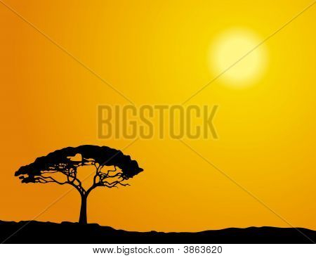 African_Tree