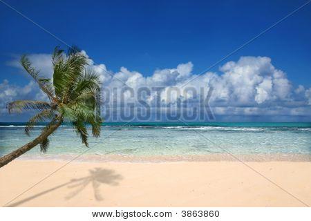 Perfect Beach In Hawaii