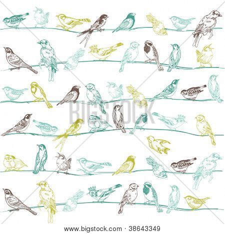 Birds Seamless Background - for design and scrapbook - in vector