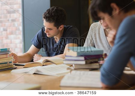 People sitting at the table while doing homework in college library