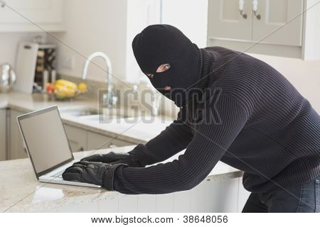 Robber at laptop in unknown home
