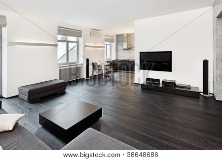 Modern minimalism style sitting room interior in black and white tones