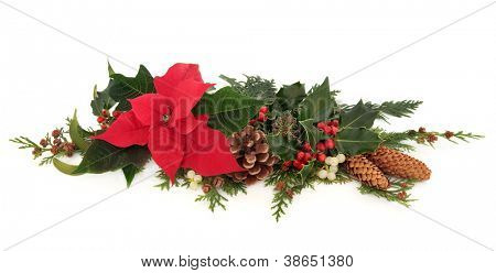 Christmas decorative floral arrangement of a poinsettia flower, holly, mistletoe,  ivy and cedar cypress leaf sprigs with pine cones over white background.