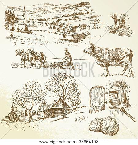 ländliche Landschaft, Landwirtschaft, Landwirtschaft