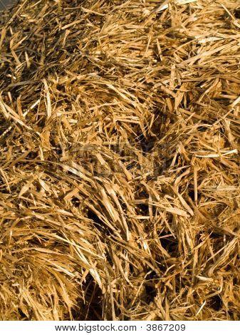 Wet Hay Straw Background