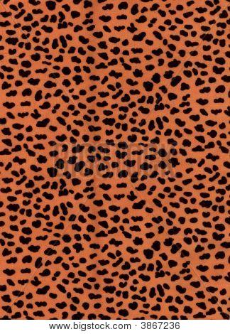 Leopard Fur Pattern