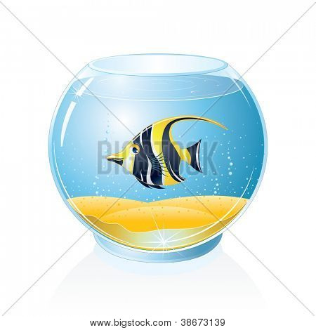 Fish Bowl with Exotic Fish. Isolated Vector Illustration