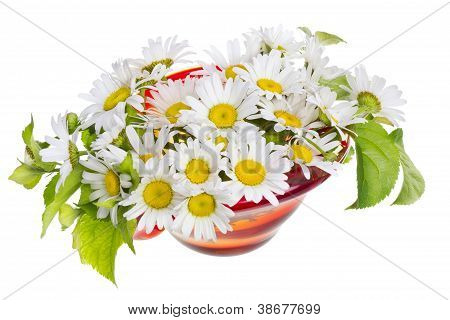 Daisies For Mum