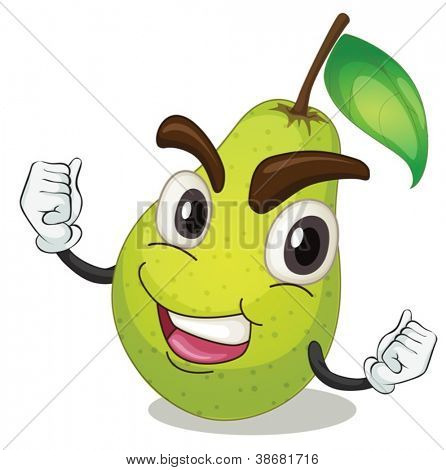 illustration of a pear on a white background