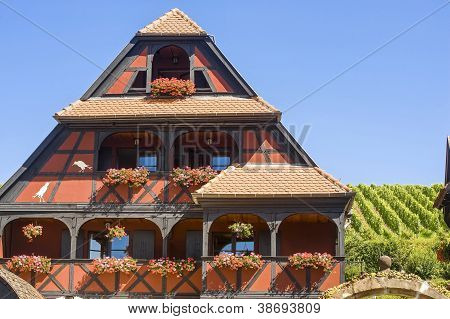 Itterswiller (alsace) - House And Vineyard