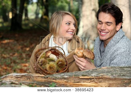 Couple picking mushrooms and chestnuts in the forest