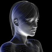 High resolution concept or conceptual 3D wireframe human female head isolated on black background as